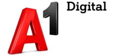A1 Digital für Unternehmensberatung mit den Schwerpunkten Businessplan, Förderung, Gesellschaftsvertrag, Digitalisierung, Website, Social Media und Datenschutz