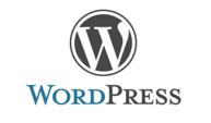 Wordpress für Unternehmensberatung mit den Schwerpunkten Businessplan, Förderung, Gesellschaftsvertrag, Digitalisierung, Website, Social Media und Datenschutz